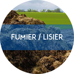 fumier lisier