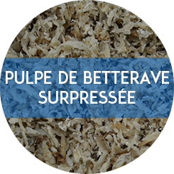 pulpe de betterave